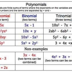 differentiated lesson plan on polynomials pearltrees