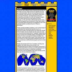 Marvelous Earth Floor: Biomes