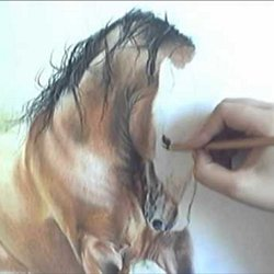 Dessin Et Peinture Video 1872 Le Cheval Multicolore A L