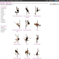 pole dance dictionary
