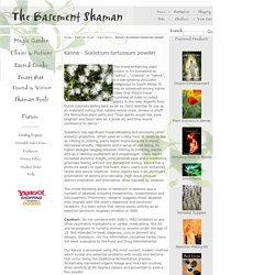 Entheogenics | Pearltrees