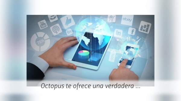 Agencia de Marketing Digital y SEO en Mexico Octopus httpsoctopus.mx
