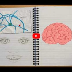 The High Cost Of Neuromyths In Education >> The Learning Brain Pearltrees