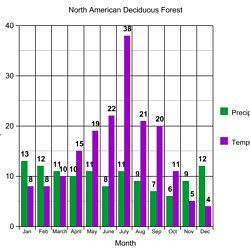 deciduous forest climate